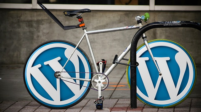 Mejorar tu SEO local para Wordpress